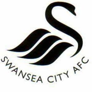 Swansea City, settimo posto che chiude il terzetto a quota 45 punti