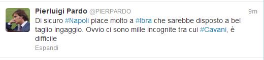 Ibra-Pardo2