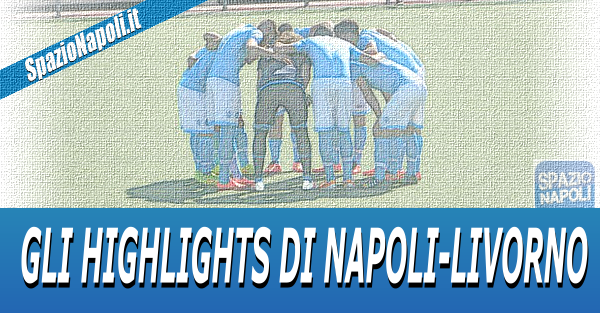 highlights nap liv primavera png