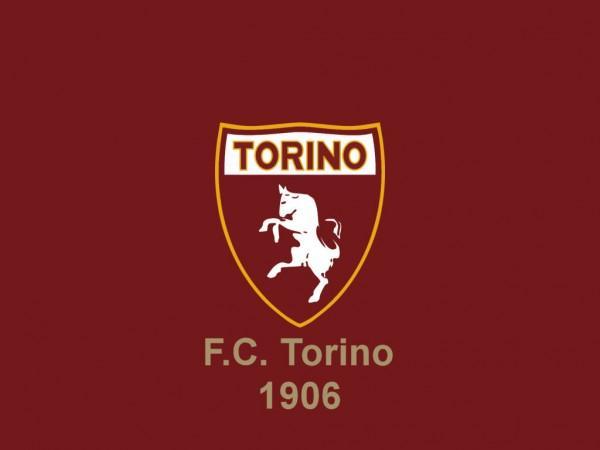 13° posto Torino, 7: Quagliarella, Pellissier, Marchese, Ogbonna, Marchetti, Balzaretti, Cacciatore