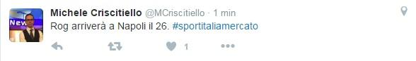 tweet criscitiello