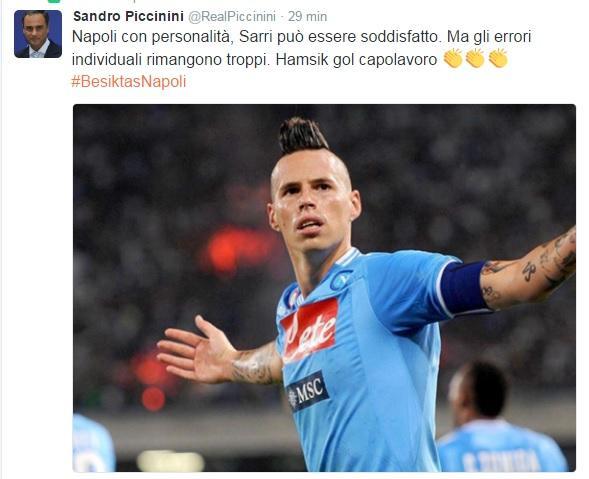tweet-piccinini