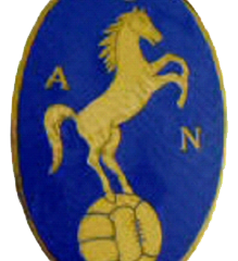 logo napoli calcio 1926 cavallo
